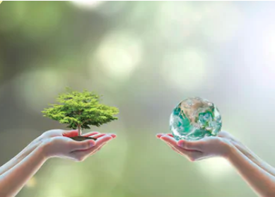 上原園環境方針